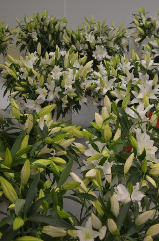 white oriental lilies fragrant wedding flowers philadelphia event designers
