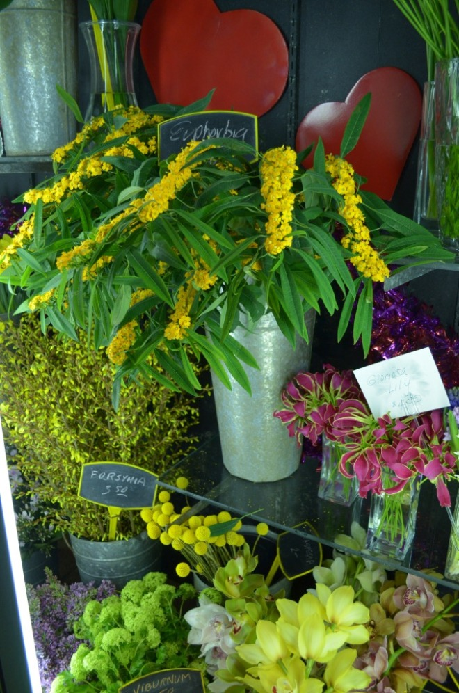 euphorbia gloriosa lilies forsythia crespedia viburnum orchids
