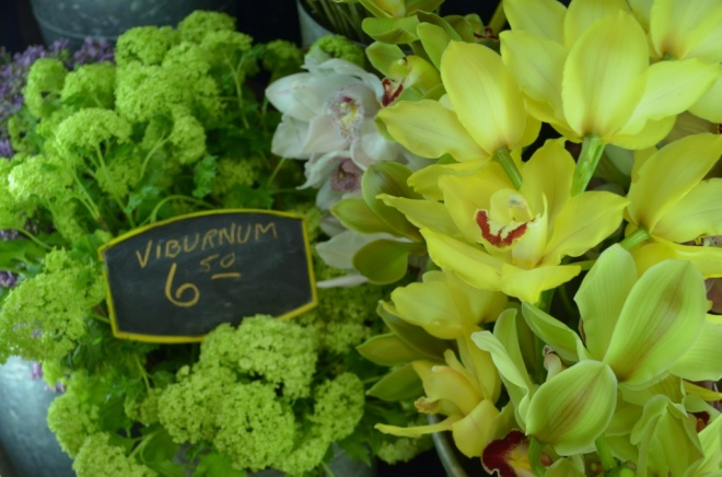 viburnum yellow orchids philadelphia florists