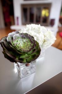 Succulents Hydrangea Modern Minimalist Weddings Philadelphia