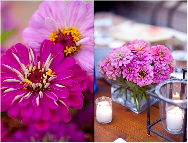 purple zinnias summer weddings evantine design