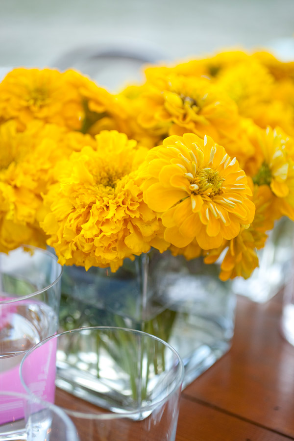 Yellow Zinnias and Marigolds Evantine Design