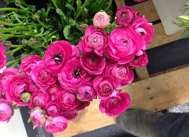 philadelphia florists event designers philadelphia