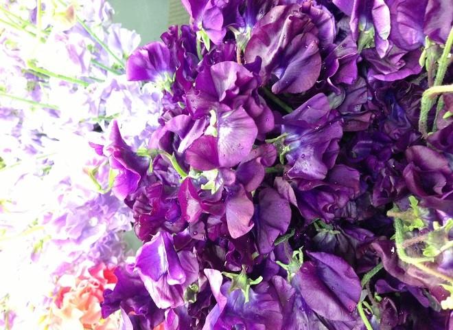 spring wedding flowers fragrant flowers evantine design