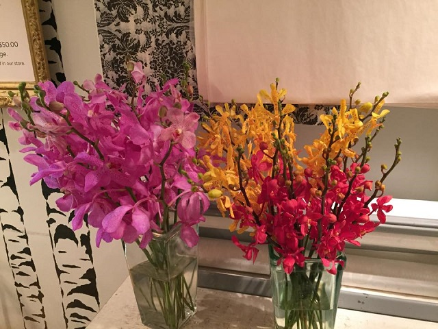 orchids for valentines day philadelphia florists evantine