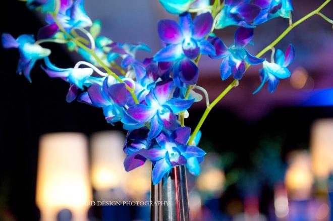blue orchids philly event designers evantine design susan beard design