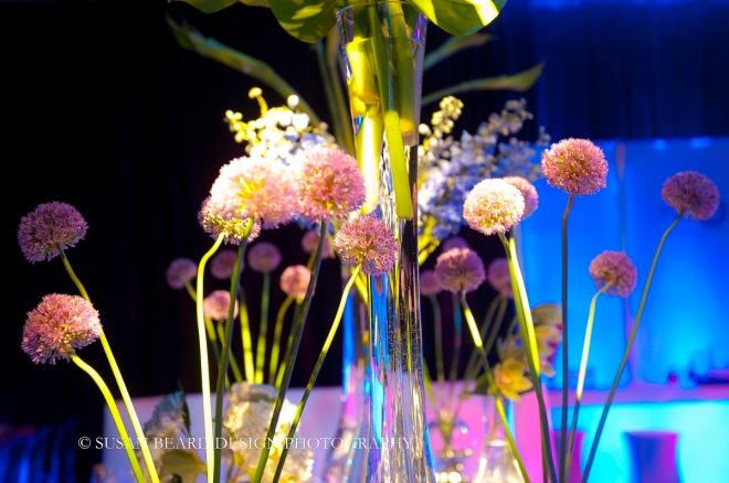 contemporary glass vases with purple allium flowers evantine design susan beard photo